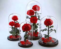 How To Turn Your Garden Into A Beautiful Home With Rose And Glass Dome Lamps